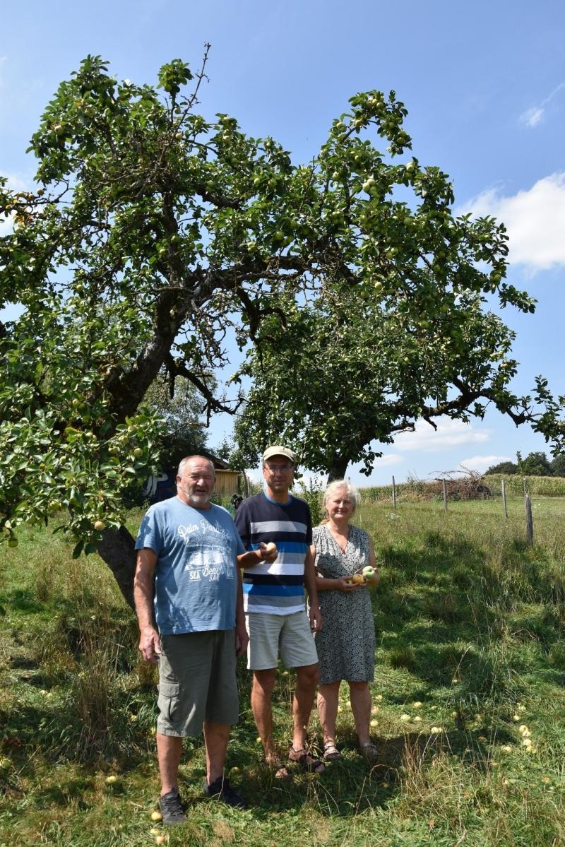 Bei der Biosammelzertifizierung eines Obstangeres in Kirchanschöring, von links: Rudolf Heinrich, Jürgen Sandner und Marlene Berger-Stöckl.