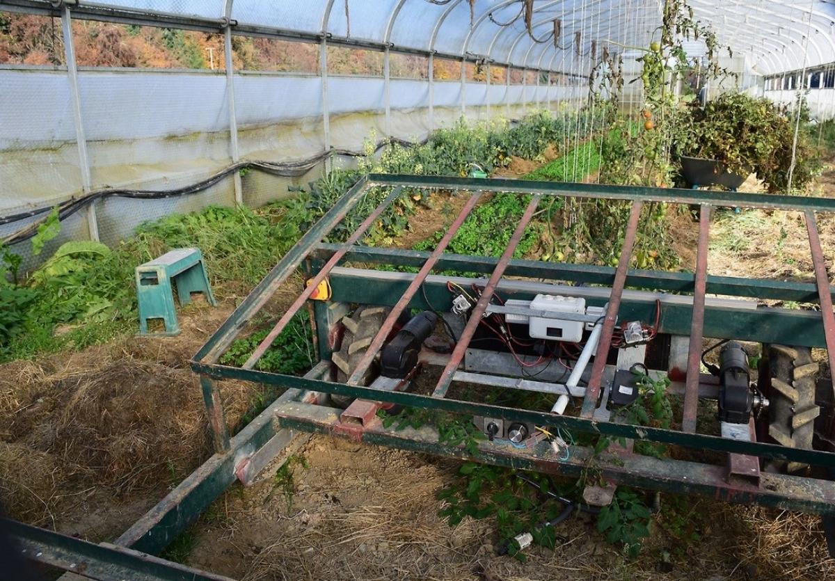 Selbstgebaute elektroangetriebene Gartenbaumaschine