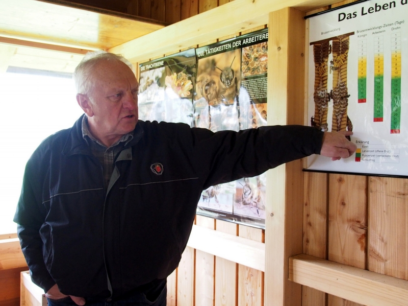 Der Vorstand des Bienenzuchtvereins, Hans Wagenstetter, erklärt den Lebenslauf der Bienen.