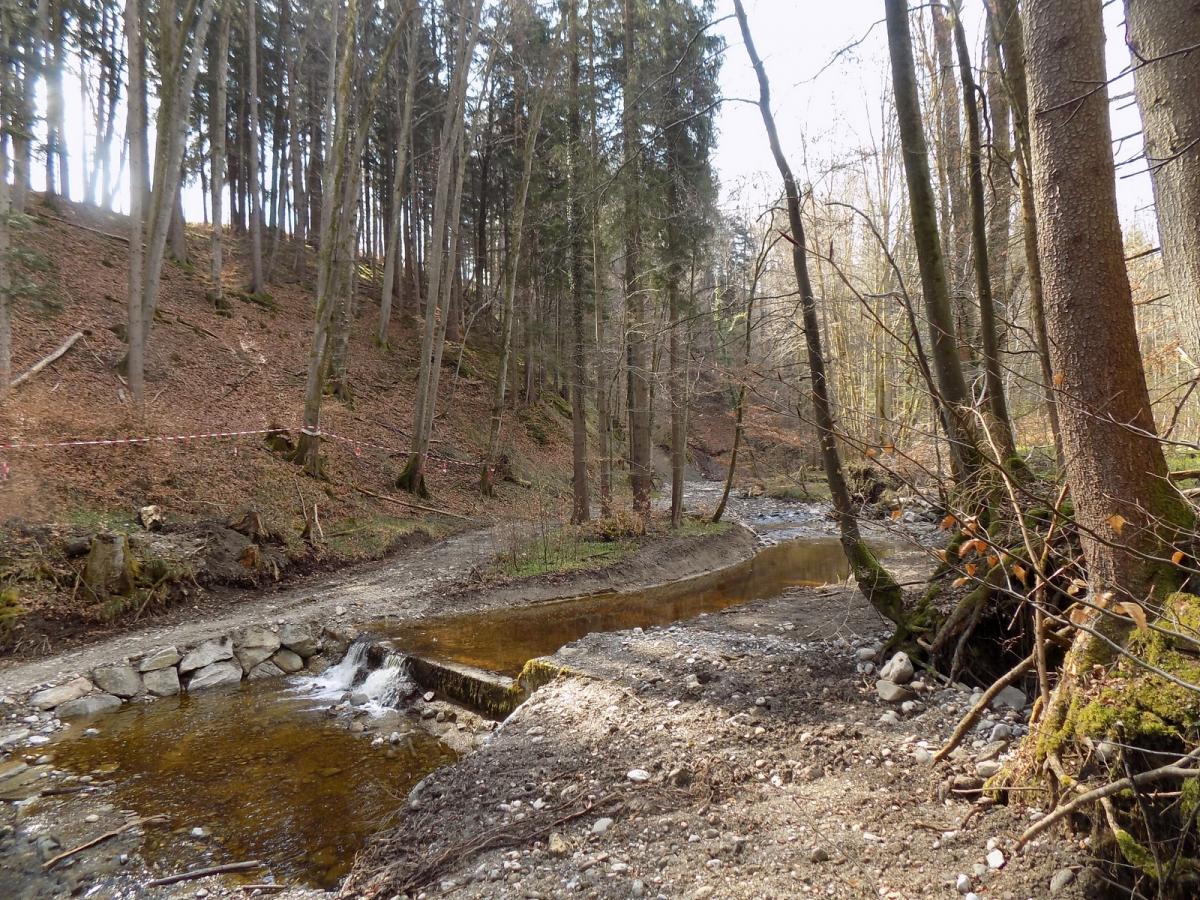 Der Panolsgraben im Gemeindegebiet Wonneberg bei Panolsreut