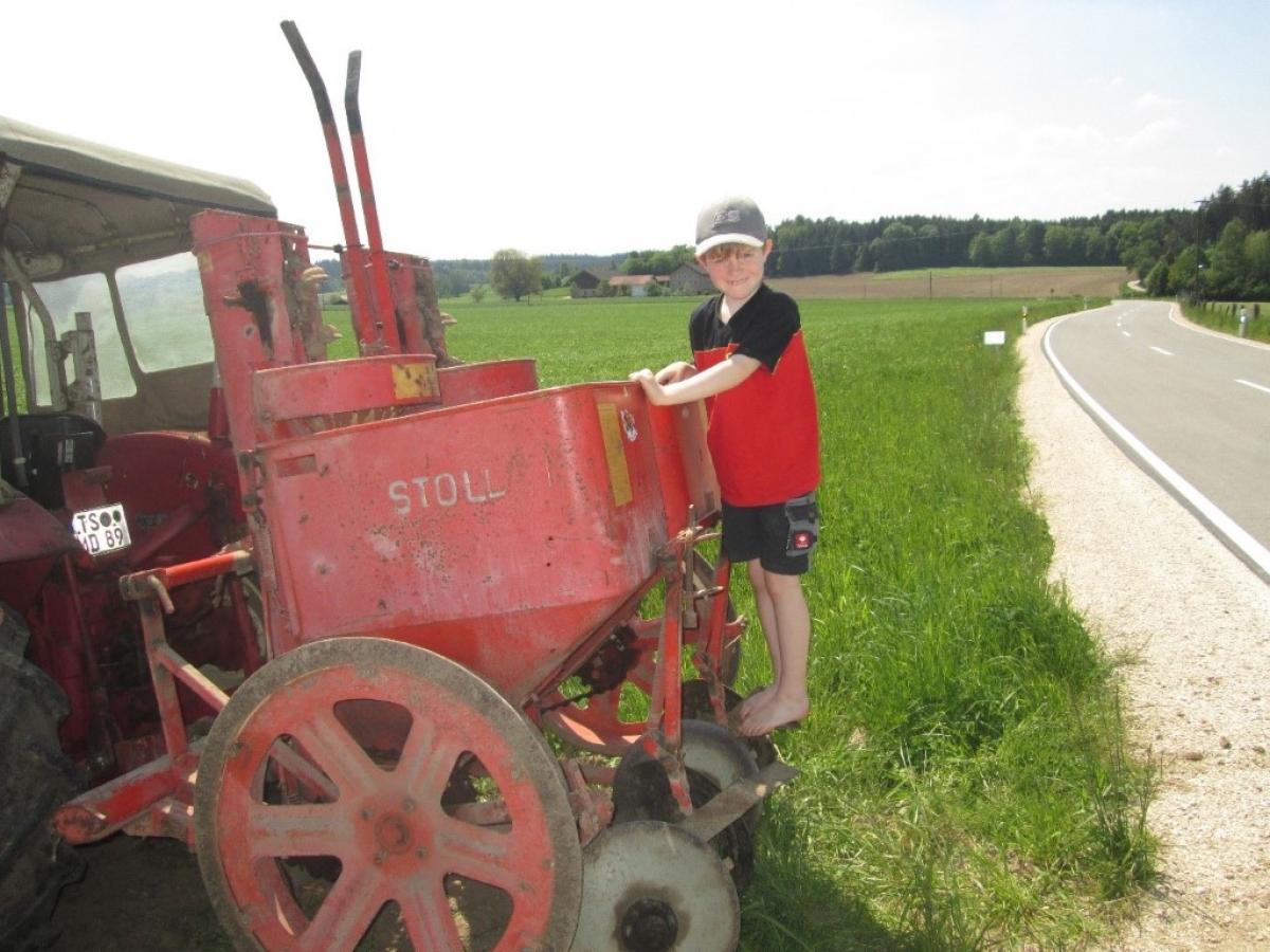 Sohn Vitus hat Spaß bei der Mithilfe am Biobetrieb, wie hier beim Kartoffeln pflanzen.