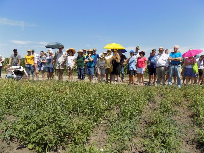 Viele Besucher waren trotz der Hitze zur Veranstaltung gekommen. Viele haben sich mit einem Hut, so mancher sogar mit einem Schirm vor der Sonne geschützt.