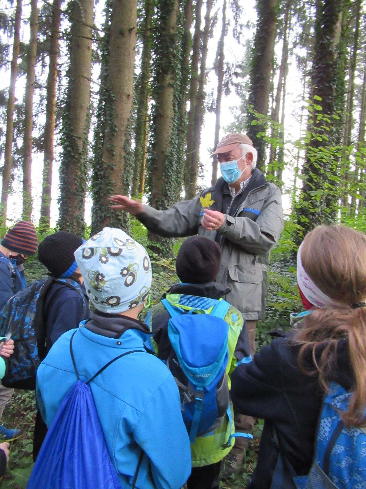 Unterrichtsgang der Klasse 3a in den Wald