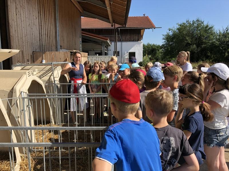 Besuch am Bauernhof