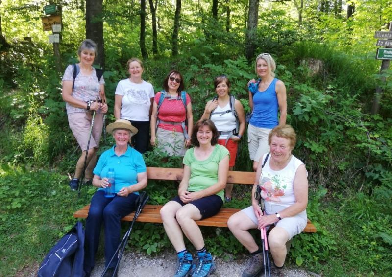 Almwanderung zur Harbachalm